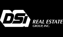 DSI Real Estate Logo